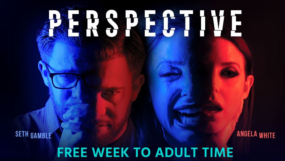 Seth Gamble Takes the Lead as Adult Time's Perspective Sparks 2020 Award Season